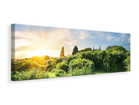 Panoramic Canvas Print Sunrise In The Park