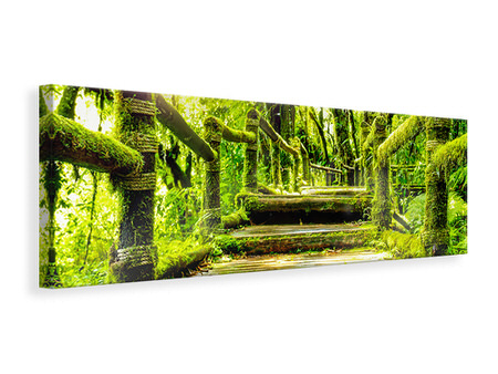 Panoramic Canvas Print Moss