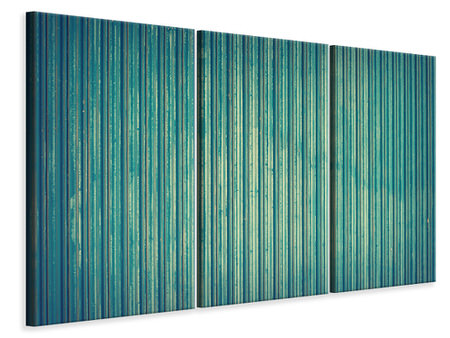 3 Piece Canvas Print Strip of nature