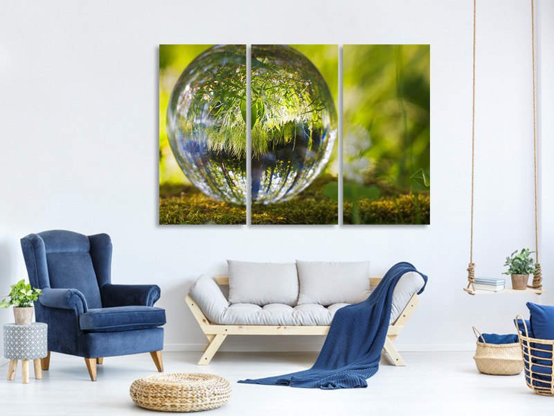 3 Piece Canvas Print Nature ball