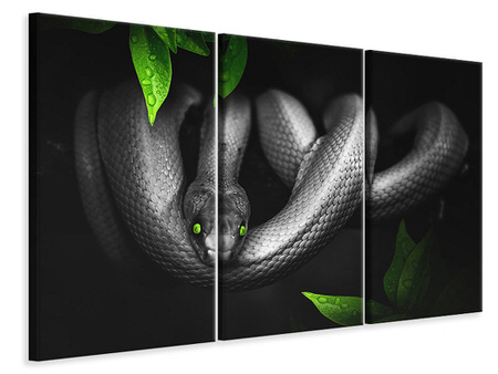 3 Piece Canvas Print Attention snake