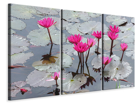 3 Piece Canvas Print Jump In The Lily Pond