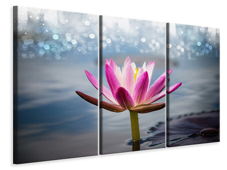 3 Piece Canvas Print Lotus In The Morning Dew