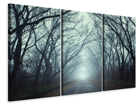 3 Piece Canvas Print Cloud Forest
