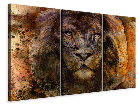3 Piece Canvas Print Portrait Of A Lion