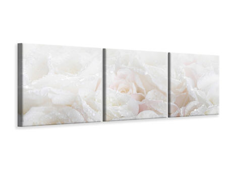 Panoramic 3 Piece Canvas Print White Roses In The Morning Dew