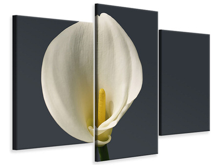 Modern 3 Piece Canvas Print Proud Calla