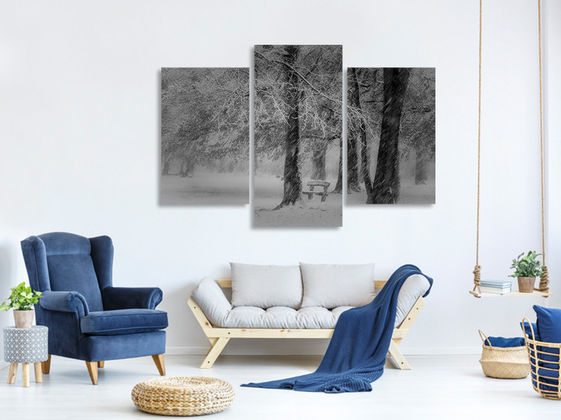 Modern 3 Piece Canvas Print Transformation