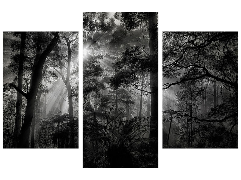 Modern 3 Piece Canvas Print Primary Forest