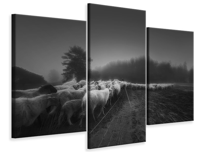 Modern 3 Piece Canvas Print Foggy Memory Of The Past II