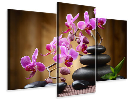 Modern 3 Piece Canvas Print Wellness Stones