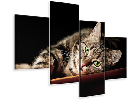 Modern 4 Piece Canvas Print Relaxed Cat