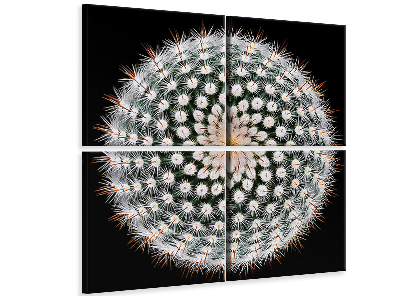 4 Piece Canvas Print Notocactus Scopa