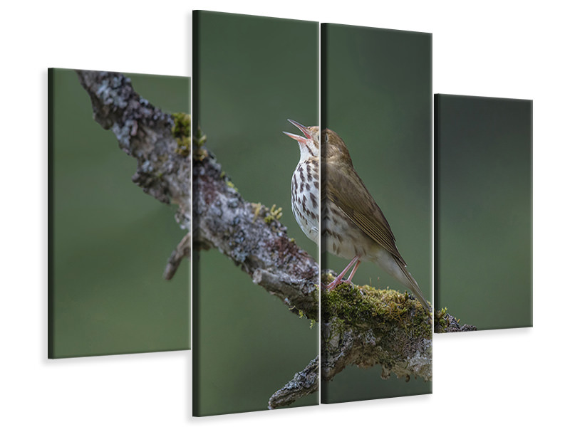 4 Piece Canvas Print In The Forest