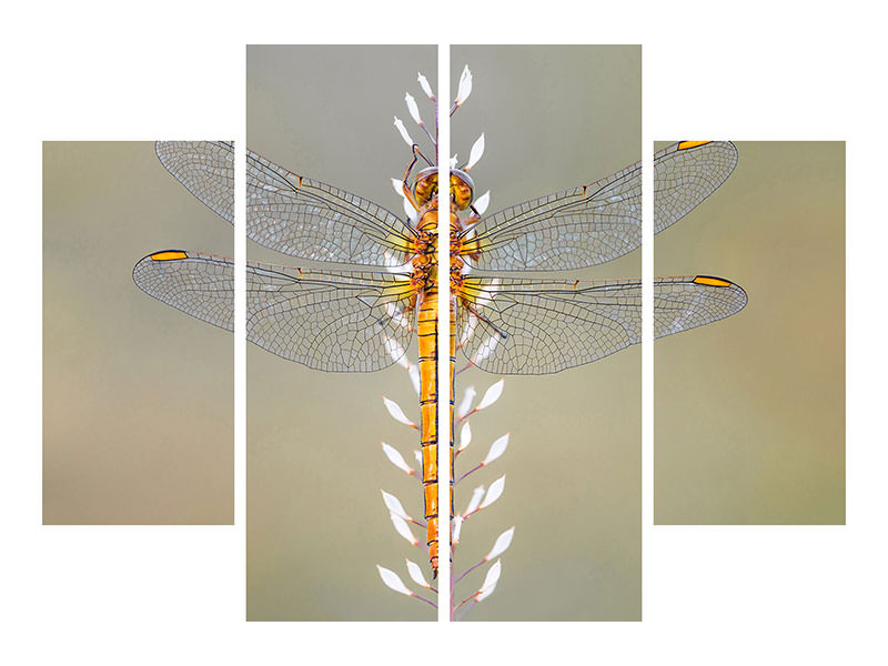 4 Piece Canvas Print Dragonfly