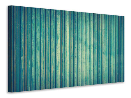 Canvas print Strip of nature