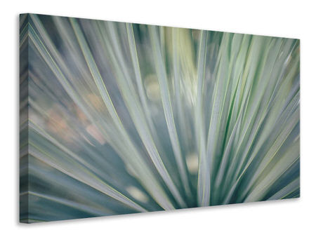 Canvas print Strip of plant