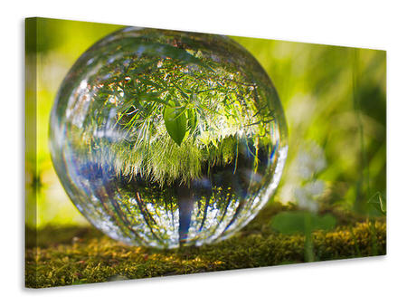 Canvas print Nature ball