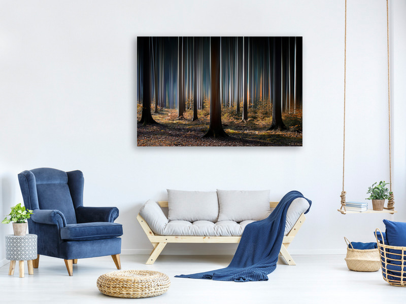 Canvas print Mystic Wood