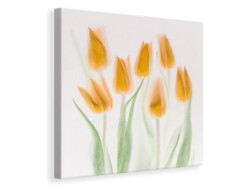 Canvas print Golden Tulips