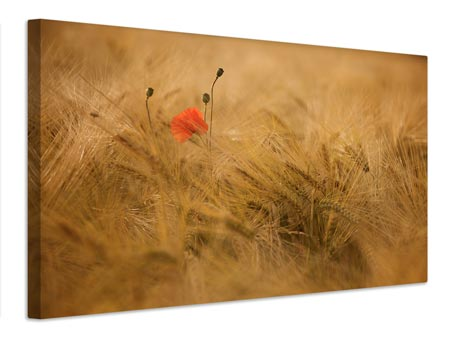 Canvas print Ephemeral