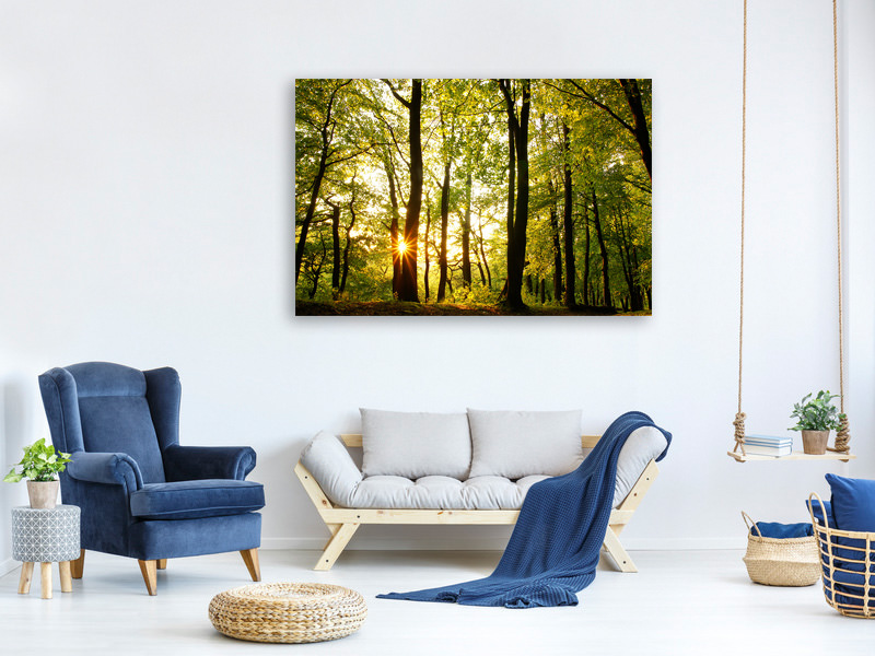 Canvas print Sunset Between Trees