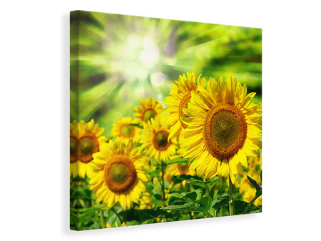 Canvas print The Sun And The Flowers