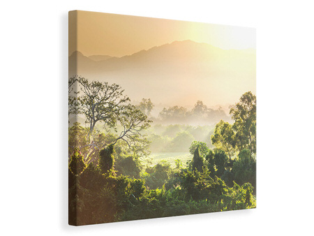 Canvas print Light Show In forest