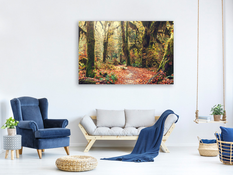 Canvas print Fairies Forest