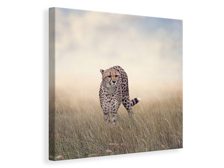 Canvas print The Cheetah