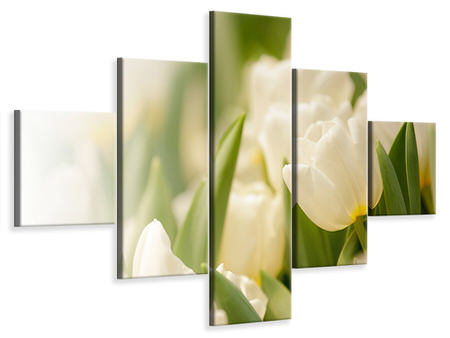 5 Piece Canvas Print Tulips Perspective